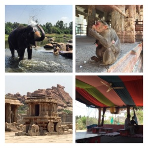 Elephant, monkeys and temples