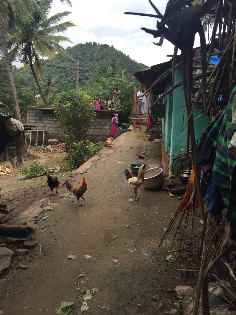 Life in a tribal village