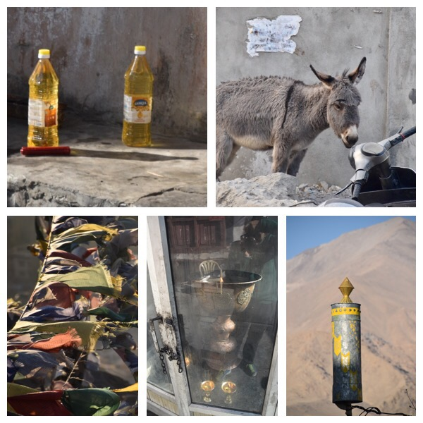 Curiosities in Ladakh