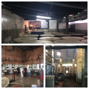 Visit at an Ayurvedic factory